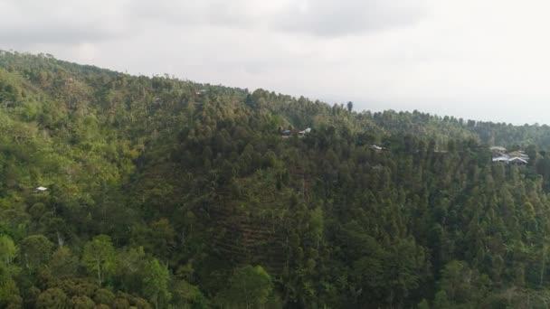 tropische Landschaft Regenwald und Berge
