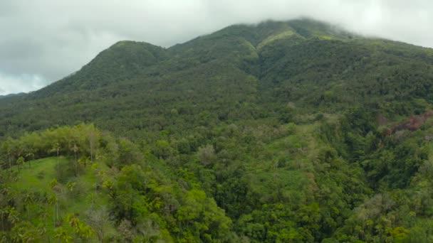 esőerdőkkel borított hegyek, Fülöp-szigetek, Camiguin.