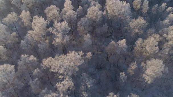 Winterlandschaft in Landschaft