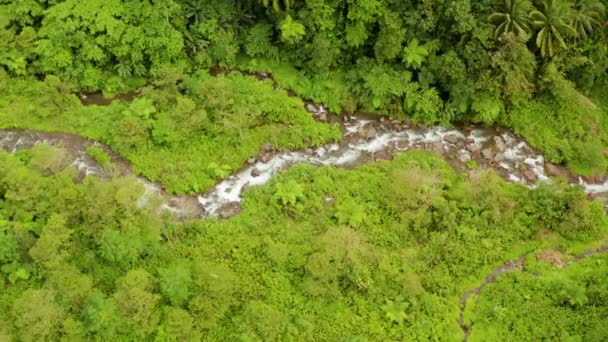 Fiume che scorre nella giungla di montagna, Filippine, Camiguin.