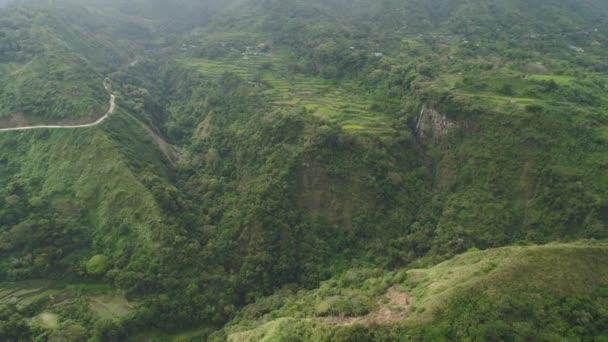 rýžové terasy v horách.