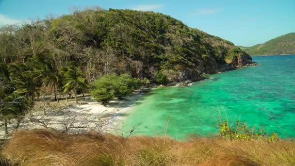 torpical sziget fehér homokos stranddal, felülnézet.