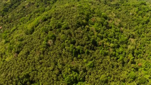 Trópusi táj esőerdők. Camiguin, Fülöp-szigetek