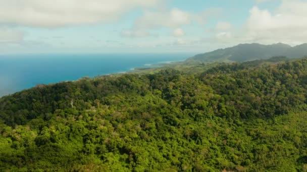 Pobřeží na tropickém ostrově. Ostrov Balabac, Palawan