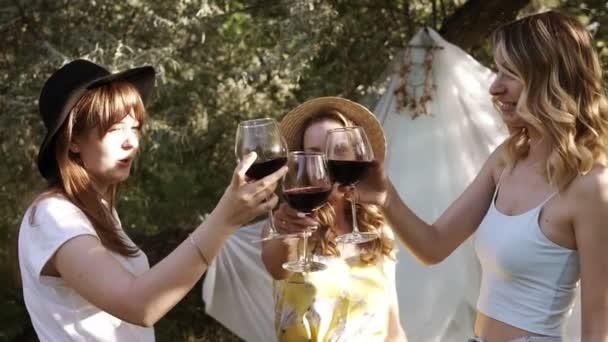 Atraktivní ženy, Přítelkyně na piknik venku. Oslava a cinkání s sklenky na víno. Pití alkoholu. Zpomalený pohyb