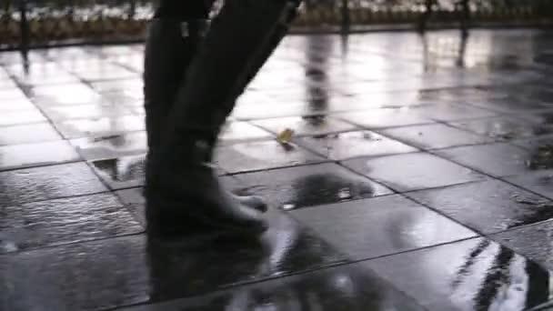Žena se projít na podzimní park pěšky podél chodníku ulice. Detail nohy a boty. Půvabná dáma nosit černé vysoké boty. Podzimní počasí, rayny, mokré silnici. Boční pohled