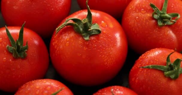 Gruppe frischer Tomaten mit rotierenden Wassertropfen