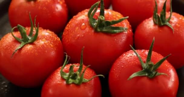 Skupina čerstvých rajčat s rotujícími kapkami vody