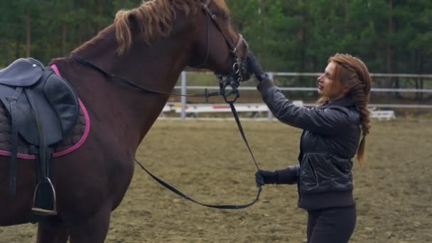 A young woman with brown hair is training a brown horse. Woman on a walk with a horse. A cloudy autumn day.