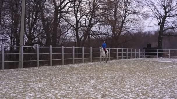 Eine junge Frau mit Blazer und Sportmütze reitet auf einem weißen Pferd in einem eingezäunten Gelände. bewölkter Wintertag.