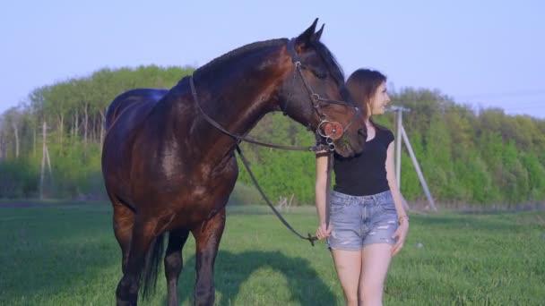 Fiatal nő barna cowgirl egy séta egy barna csődör a réten egy nyári reggel.