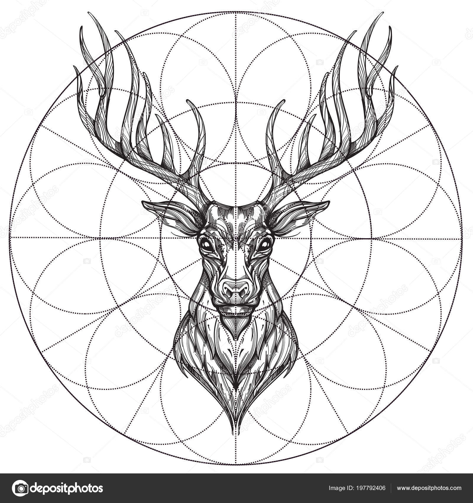 Deer Head Geometric Ornament Hand Drawn Sketch Style Outline Vector Stock