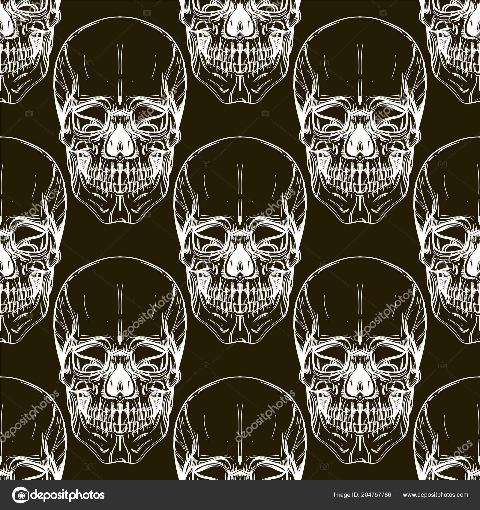 Wallpapers Skull Seamless Pattern Human Skulls Wallpapers