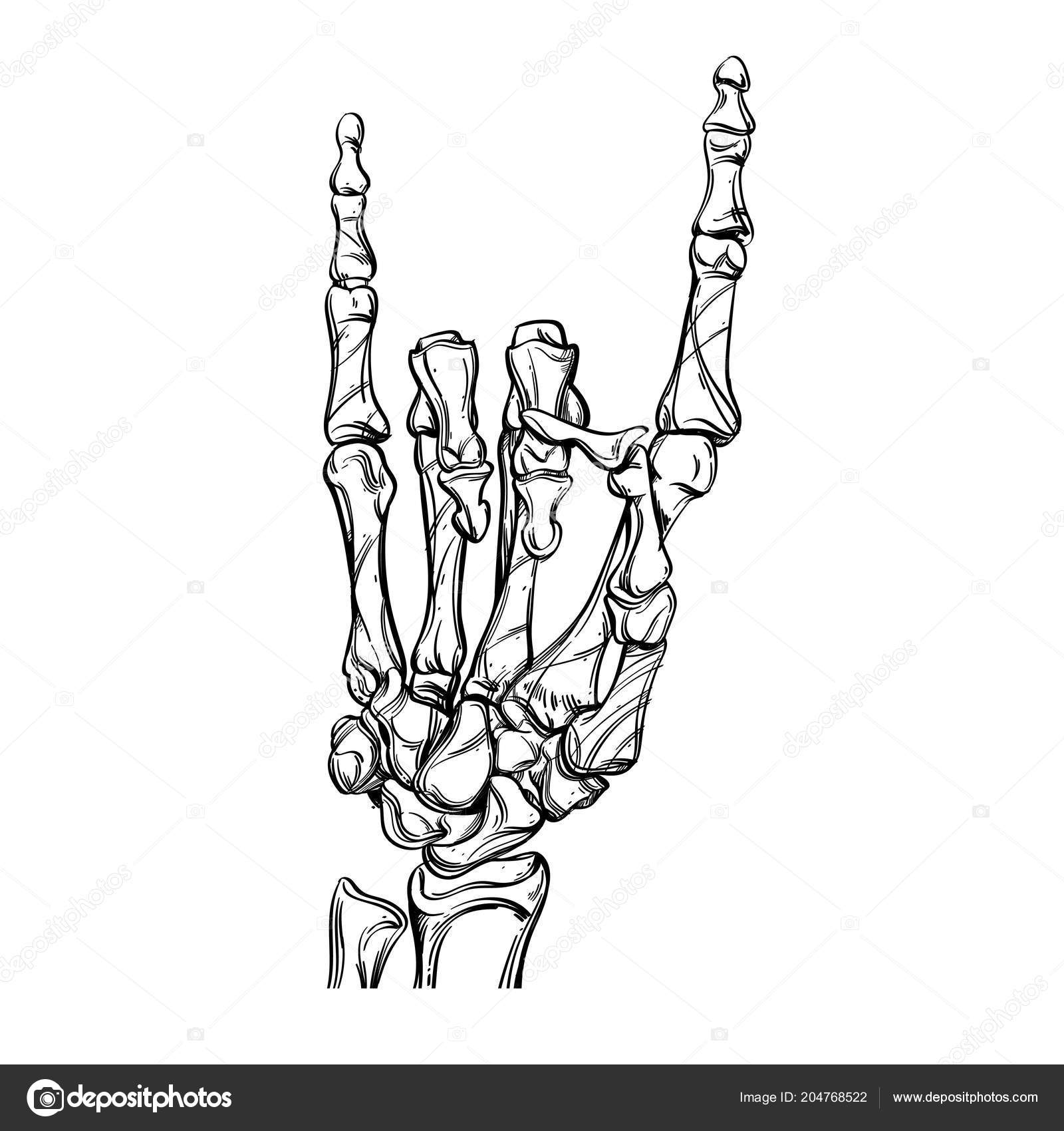 Bones Hand Drawing Style Isolated White Background Stock Vector