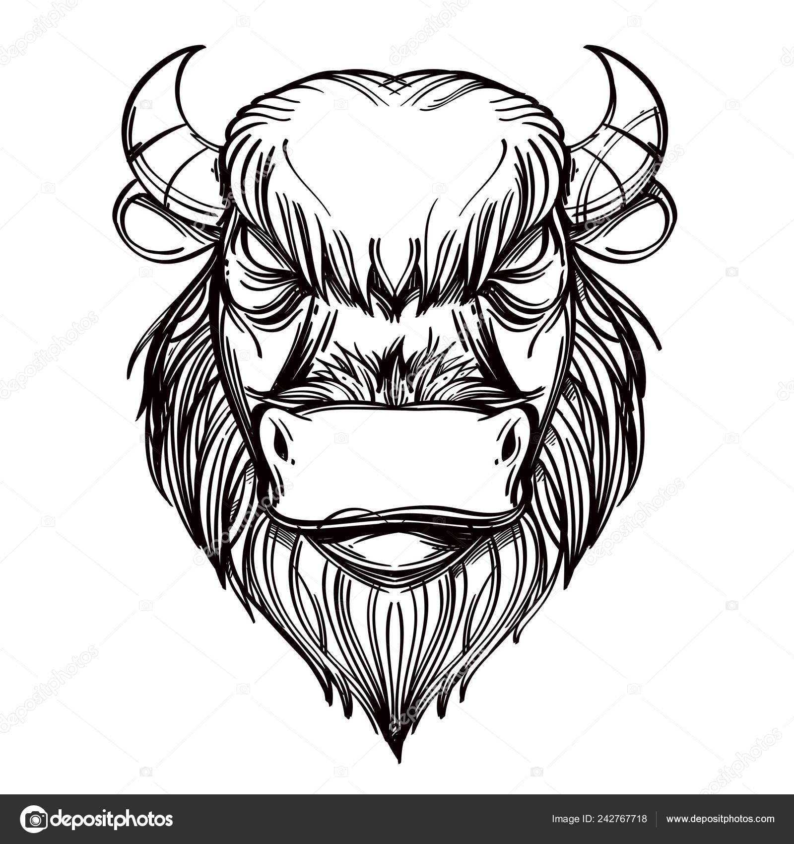 Buffalo Bull Head Outline Vector Illustration Isolated White