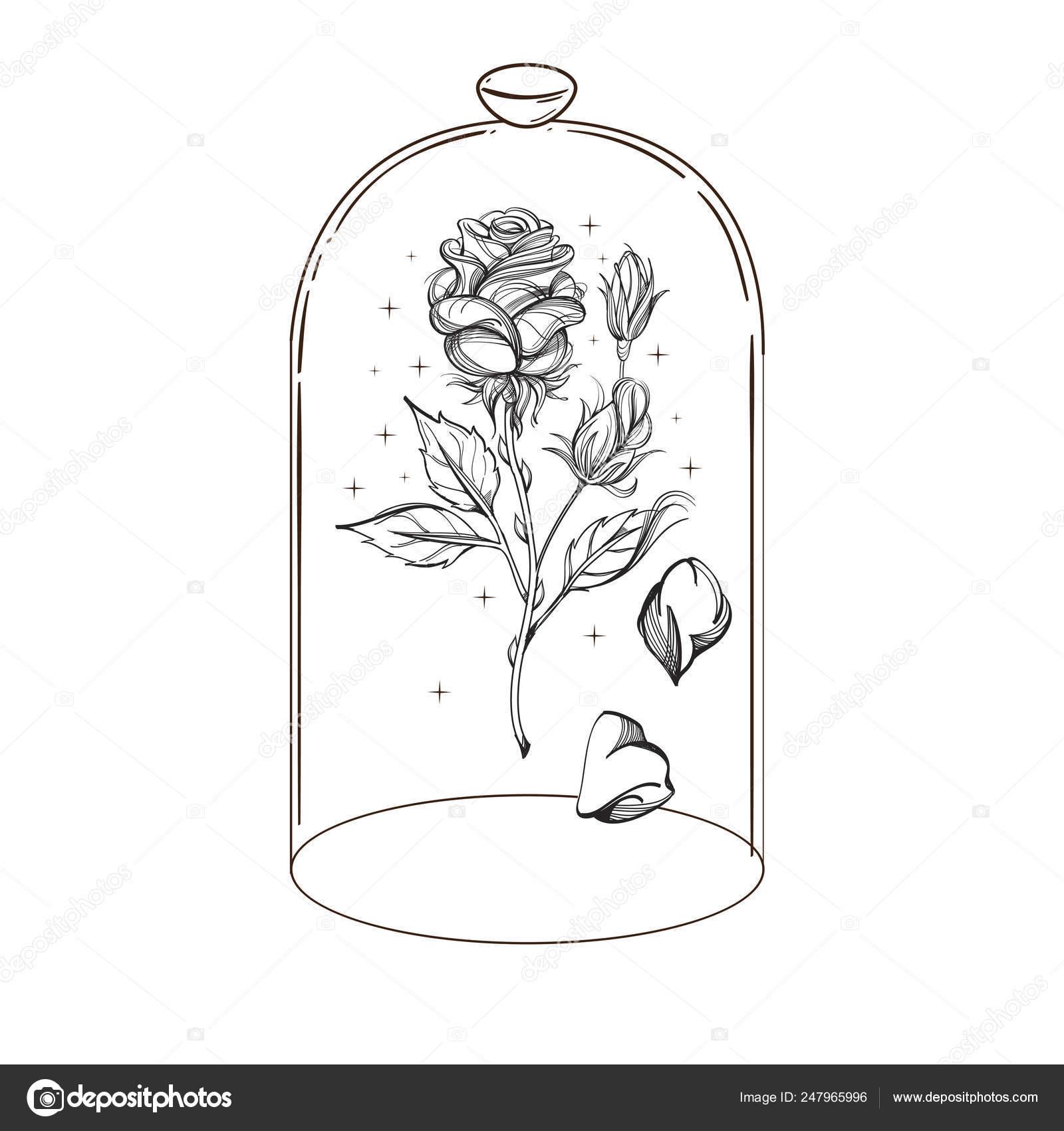 Картинки для срисовки роза в колбе