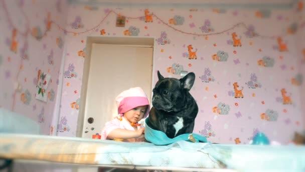 Die süße kleine Ärztin behandelt einen Hund, der auf der Couch liegt. Das Spiel mit dem Arzt. Der Hund liegt beim Arzt auf dem Tisch. Der Hund wird medizinisch versorgt.