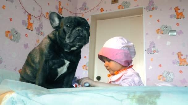 Die hübsche kleine Ärztin untersucht den Hund, um ihm eine Behandlung zu verschreiben. Der Hund liegt beim Arzt auf dem Tisch. Der Hund wird medizinisch versorgt.