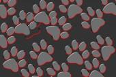 Fényképek Macska vagy kutya mancsa szürke háttérrel nyomtat