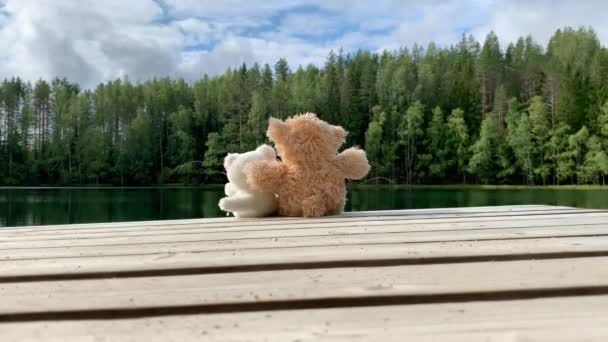 two plush toys, a brown and white bear sitting in an embrace on the pier by the lake in the forest, many Christmas trees growing on the shore, reflection in the water, green shades