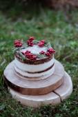 Fotografia Torta di Natale nudo. Torta casalinga di strato rustico con crema. Dolce decorato con cioccolato e frutta. Fuoco selettivo. Pezzo di torta. Torta raw vegan. Cervi