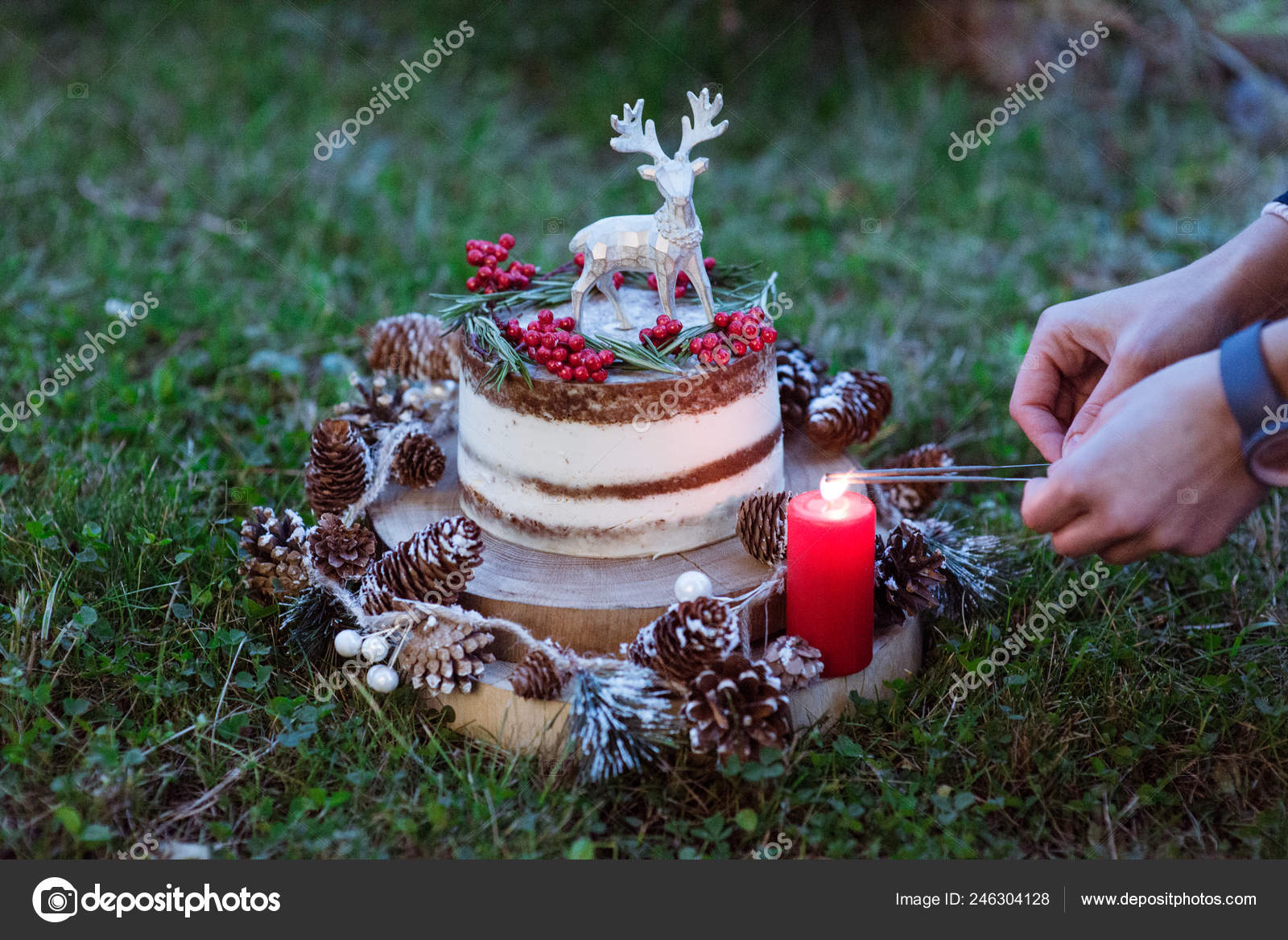 Christmas Birthday Cake.Naked Christmas Birthday Cake Rustic Layer Homemade Cake