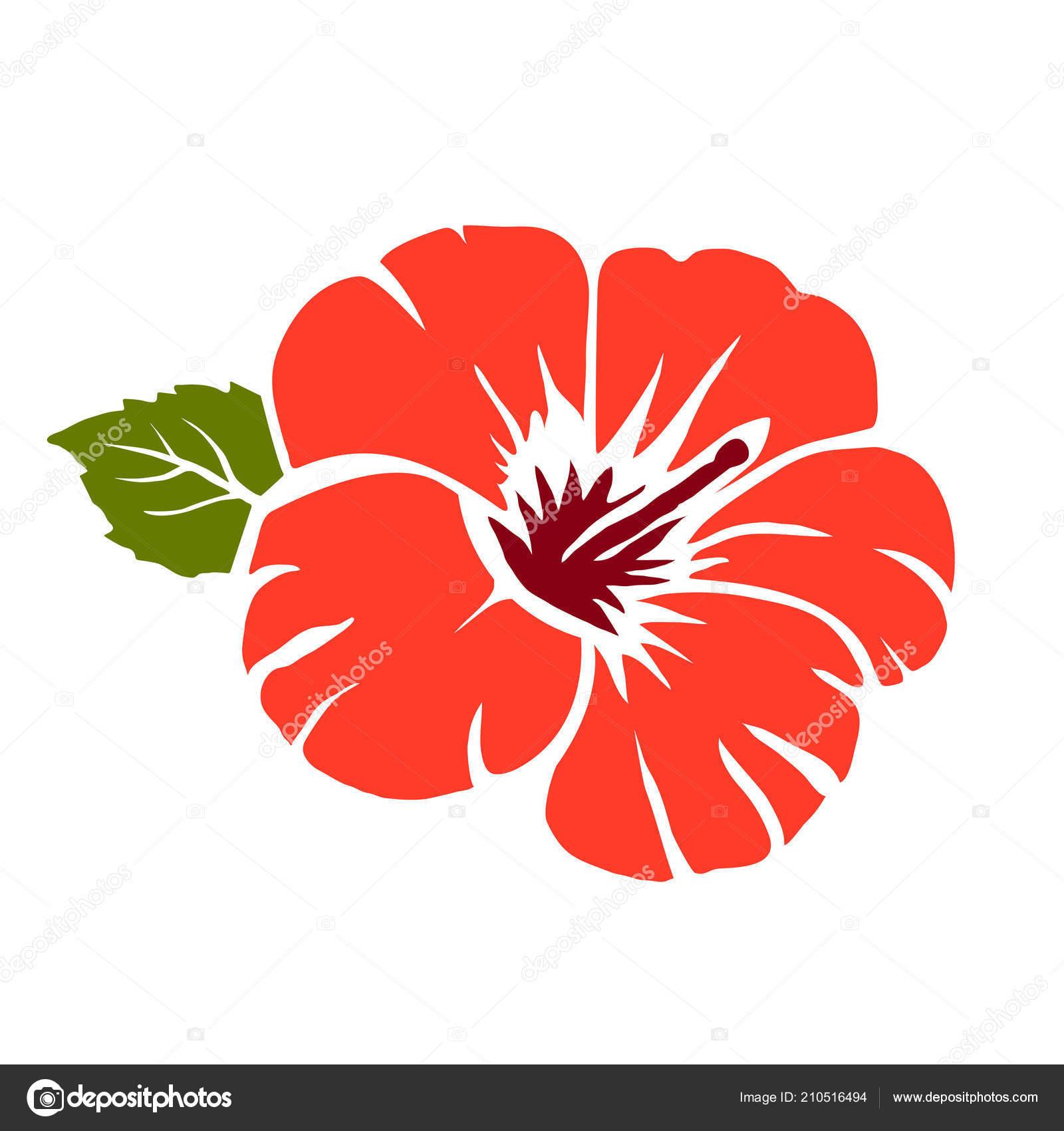 Red hibiscus flower vector illustration stock vector tkorop usage information vector image red hibiscus flower izmirmasajfo