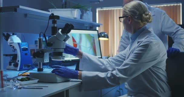 Wissenschaftler untersuchen Bakterien im Labor