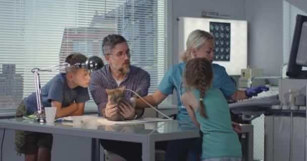 Veterinární lékař provádějící Ultrazvukový skener