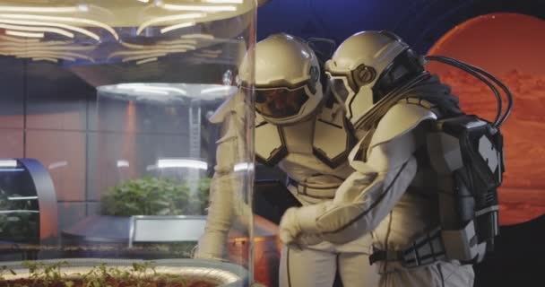 Astronauts examining plant incubator