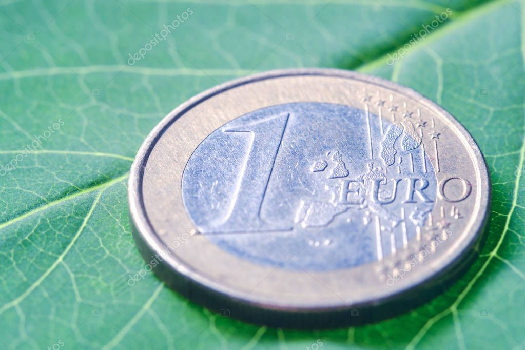 Euro coins on a green sheet, the concept of investment in the environment background