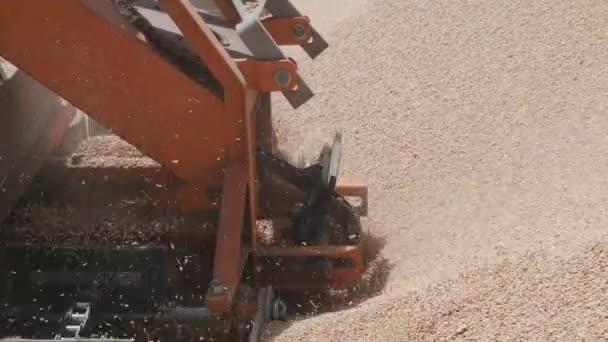 Třídicí stroj řadí obilí