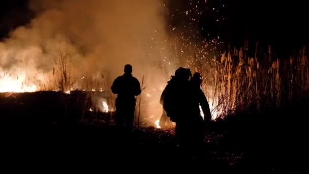 Firefighters at night extinguish the fire in the reeds