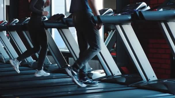 In the frame of male and female legs on a treadmill.