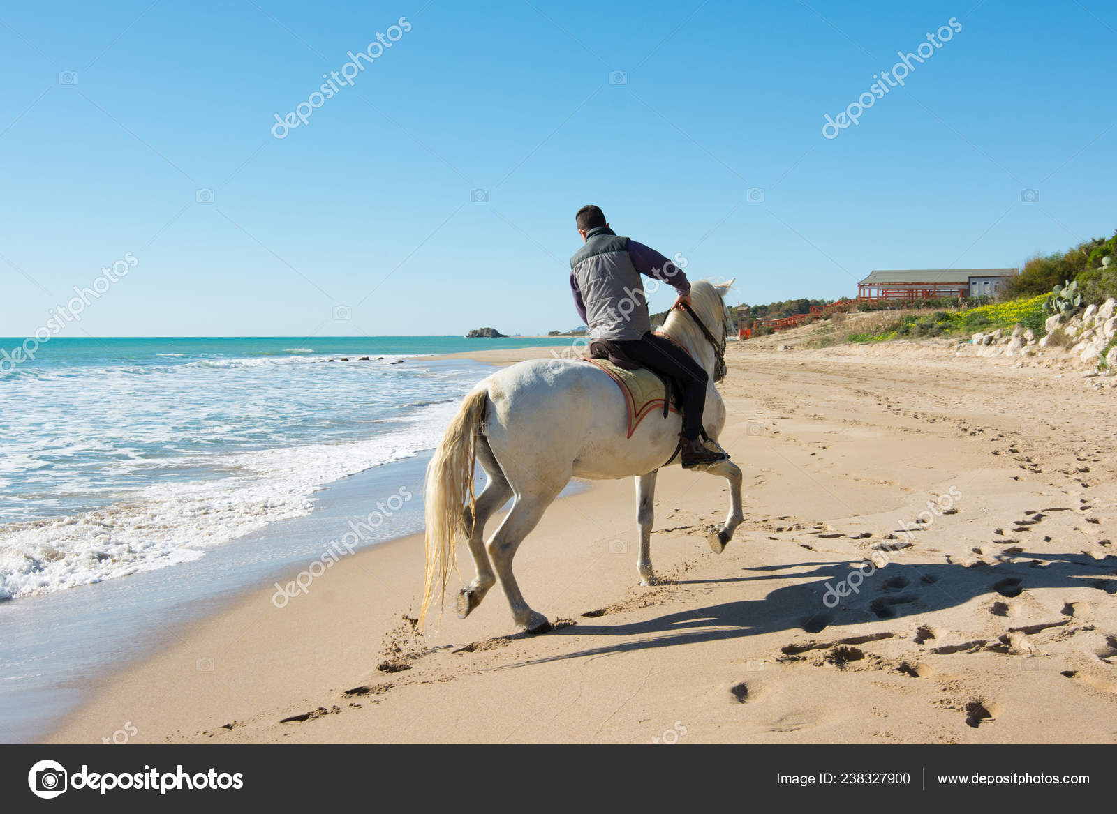 Young Man Ride White Horse Beach Stock Photo C Luckytd 238327900