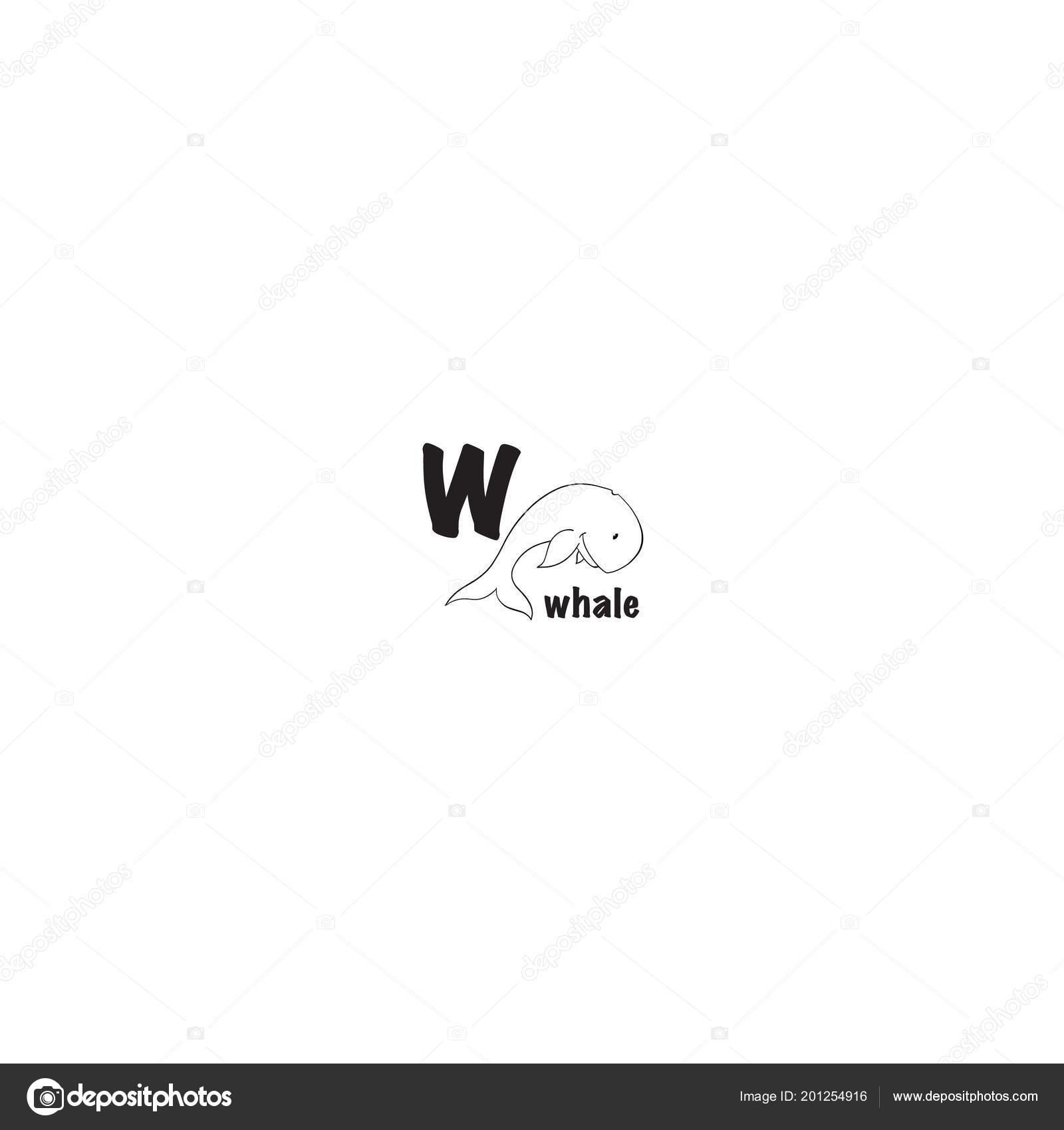 Walvis Kleurplaat Stockvector C Gennadiikorchuganov 201254916