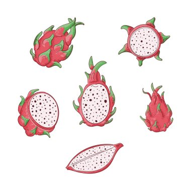 Dragon fruits whole and sliced color illustrations set