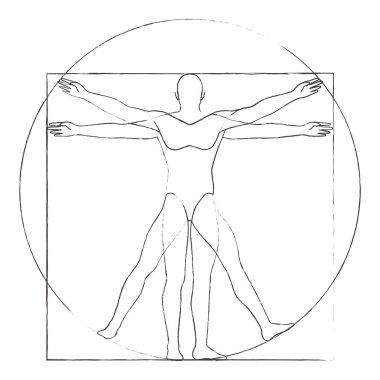 Vitruvian man drawing vector illustration