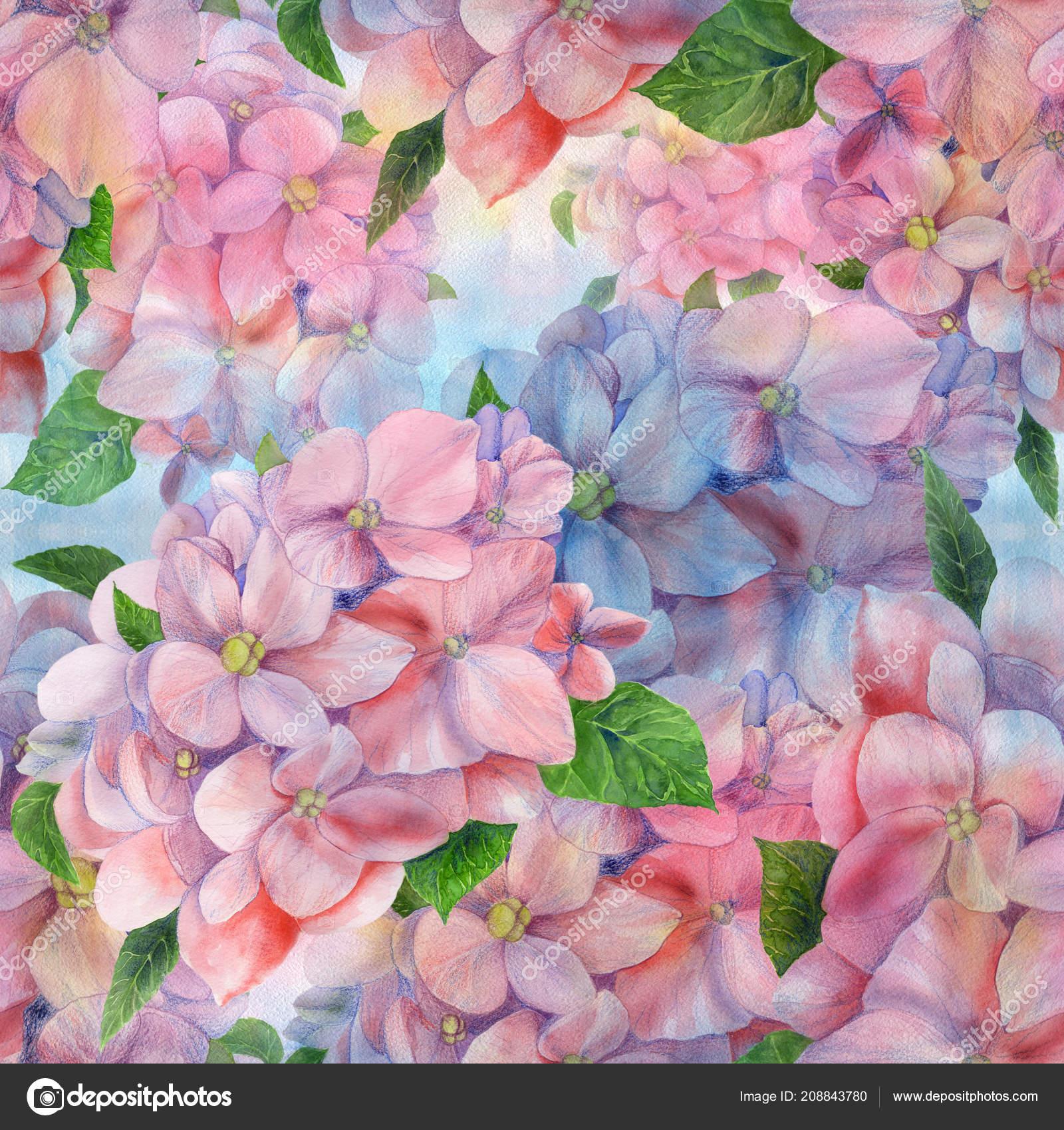 Flores Hojas Hortensias Dibujo Acuarela Patrones Sin Fisuras Uso