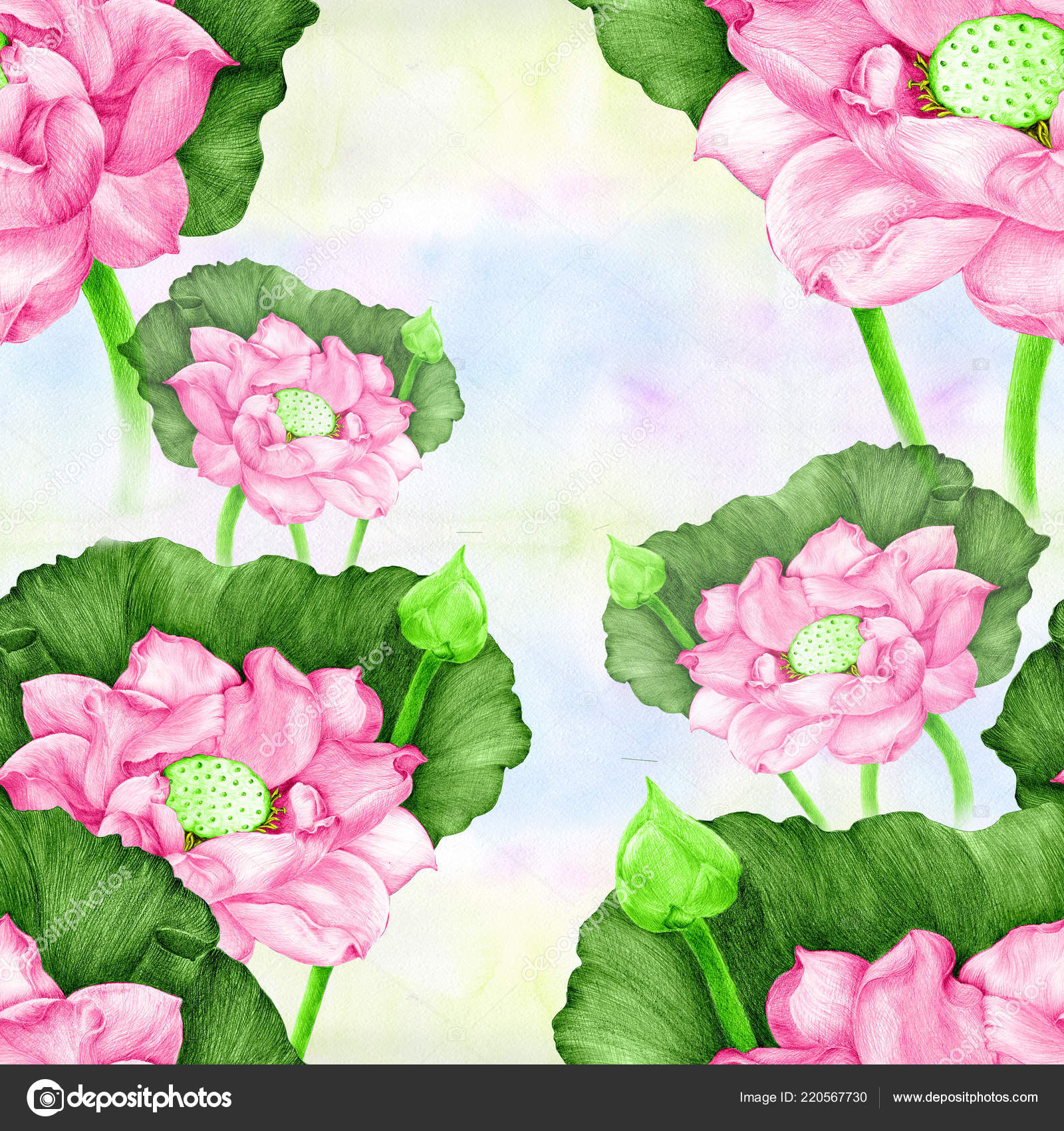 Lotus Flowers Buds Watercolor Background Seamless Pattern Wallpaper