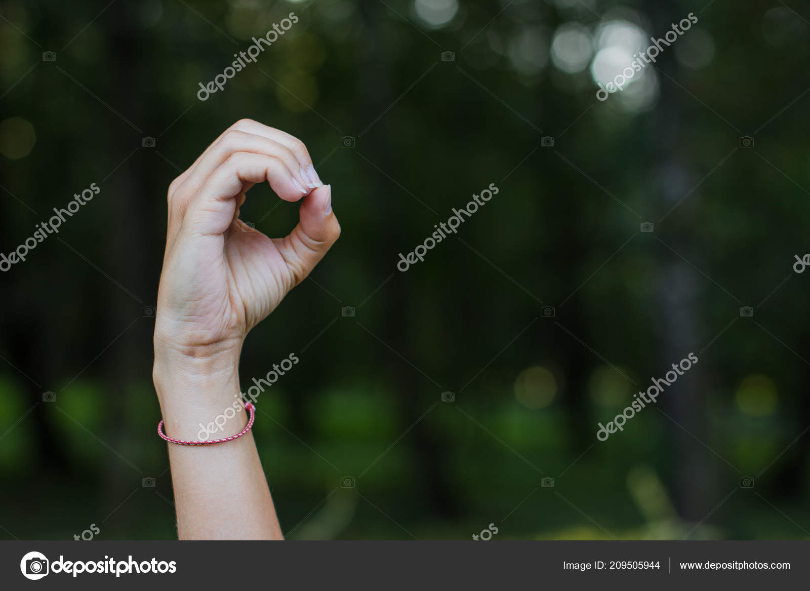 Non Verbal People Communication Concept Dactyl Alphabet Person Hand