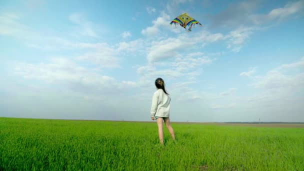 Little girl playing with a kite on a green field