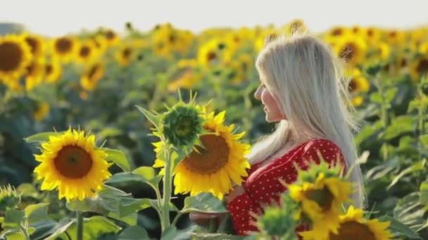 Beautiful woman portrait in sunflower field, slow motion