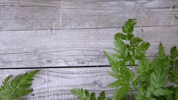 A fa táblák háttere. Dekorációs bokor faragott levelei a szélben lengő deszkák hátoldalán.