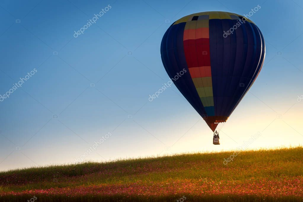 hdr shot of hot air balloons flying over field of flowers clouds  (selective focus)