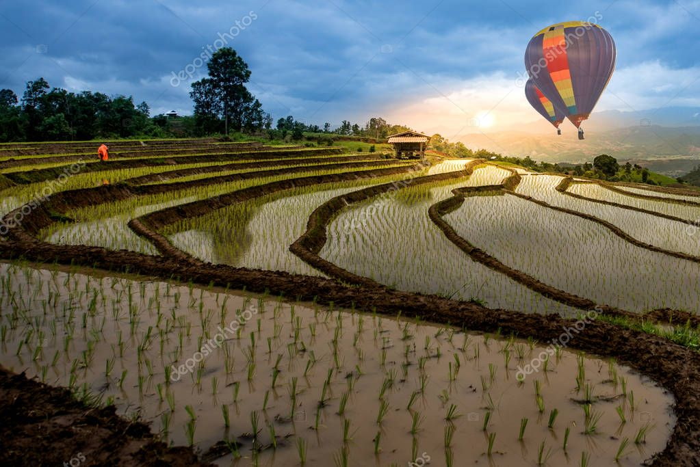 HDR shot of colorful hotair balloon flying over rice terrace on the mountain in thailand (stairways rice terrace) (with selective focus)