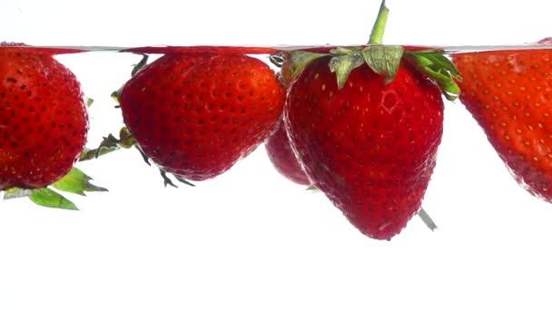 Nahaufnahme mehrerer frischer roter reifer Erdbeeren, die in klarem, transparentem Wasser schwimmen und geworfen werden, flache Seitenansicht, Zeitlupe