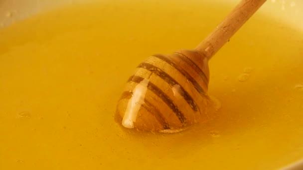 Detailní záběr rotující lžíce naběračka dřevěné honey v misce čerstvé husté tekutiny akátovým medem, pohled z vysokého úhlu, zpomalené