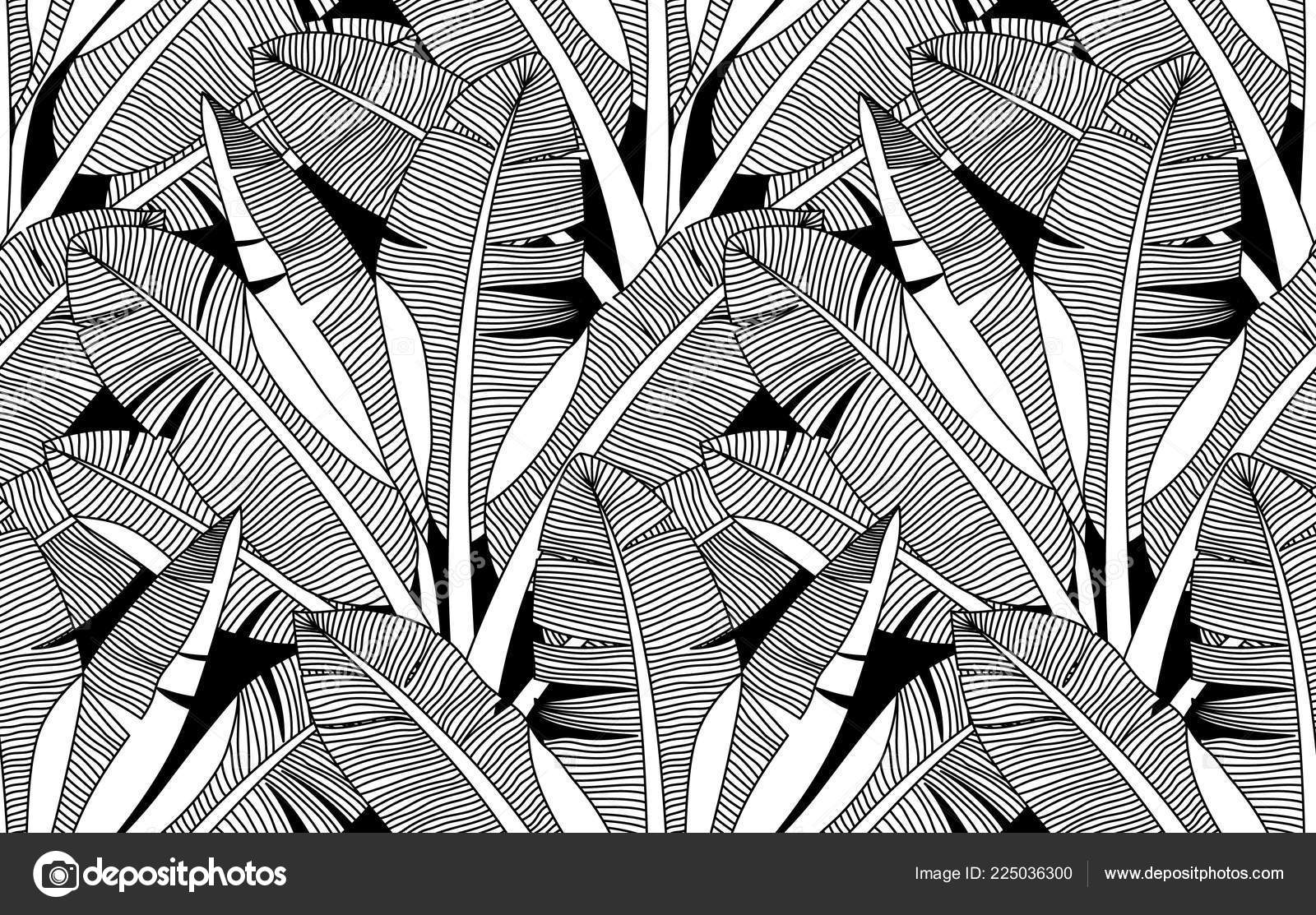 Jungle Exotic Palm Leaves Seamless Pattern Banana Leaf Vector Background Stock Vector C S 225036300 Download 21,000+ royalty free tropical leaves wallpaper vector images. https depositphotos com 225036300 stock illustration jungle exotic palm leaves seamless html