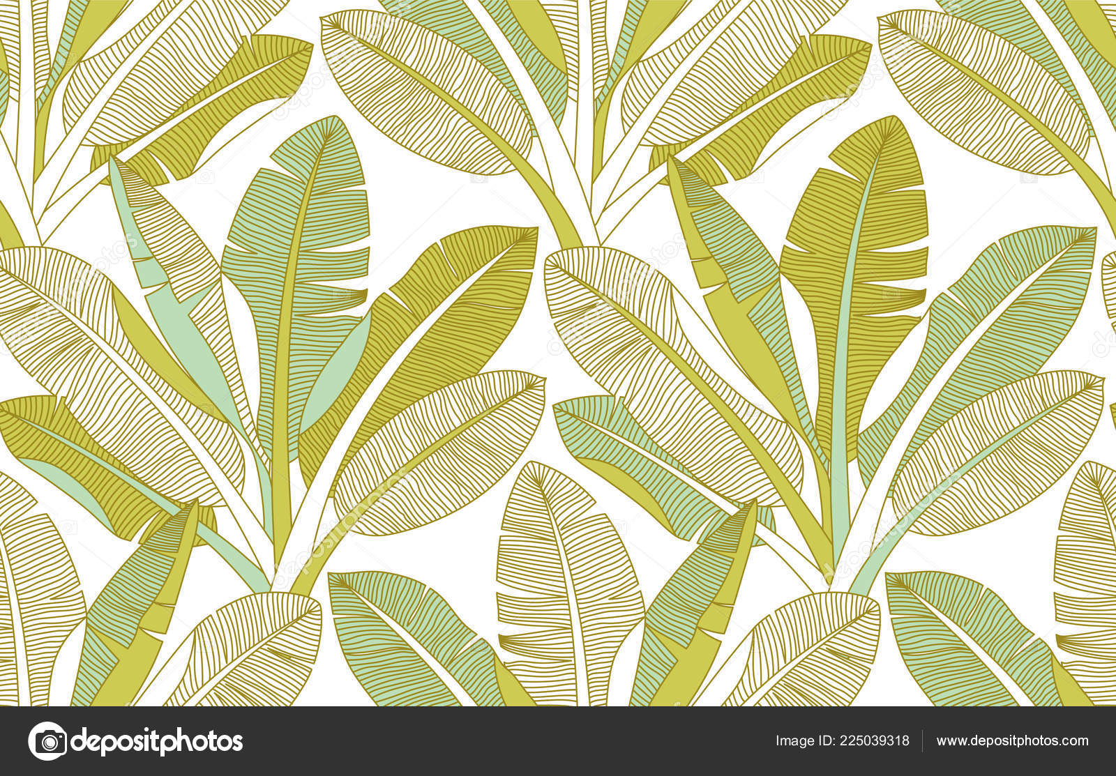 Vector Palm Frond Wallpaper Jungle Exotic Palm Leaves